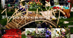 expozitie-casa-cartii-fotopress-24 (6)