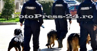 jandarmeria-_arges-fotopress-24ro