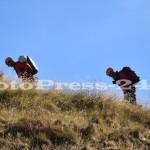 exercitiu-jandarmeria montanta-salvamont-arges-fotopress-24 (7)