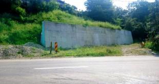 ZidStradaRozlelor01