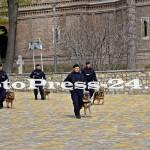 ziua jandarmeriei romane - fotopress24 (36)