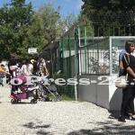 gradina zoo - 1 iunie pitesti (6)