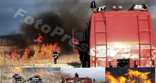 .Incendiu de vegetație uscată -foto-Mihai-Neacsu (1)