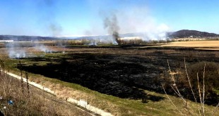 Incendiu de vegetație uscată, în zona pasarelei spre Uzină