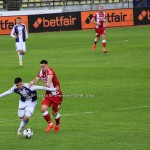FC ARGES-DINAMO BUCURESTI (108)