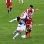 FC ARGES-DINAMO BUCURESTI (111)