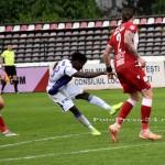 FC ARGES-DINAMO BUCURESTI (135)
