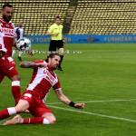 FC ARGES-DINAMO BUCURESTI (145)