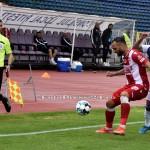 FC ARGES-DINAMO BUCURESTI (178)