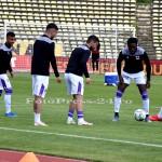 FC ARGES-DINAMO BUCURESTI (2)