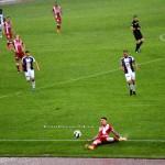 FC ARGES-DINAMO BUCURESTI (90)