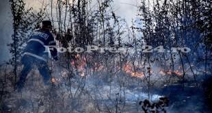isu-arges-incendiu-fotopress-24ro