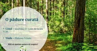 ecologizare pădurea Trivale