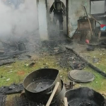 incendiu casa albota (1)