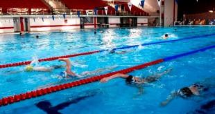 înotători