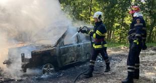 Autoturism mistuit de flăcăriîn pădurea Bușaga - Curtea de Argeș (2)