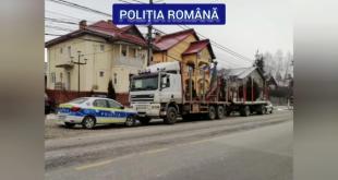 mijloace transport materiale lemnoase (3)